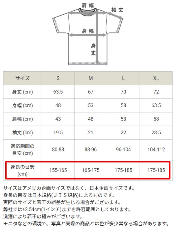 チャンピオンT1011のサイズ表