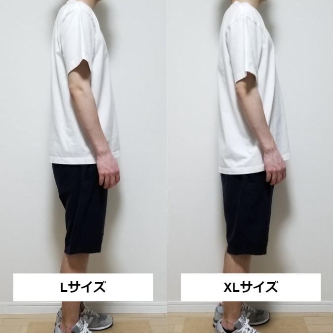 ヘインズ・ビーフィーのLとXLのサイズ感の比較
